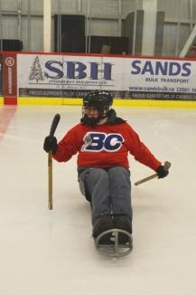 hockey - web